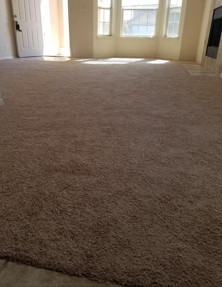 Carpet Gallery Flooring By Alex Amp Alex